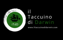 logo-itdd2